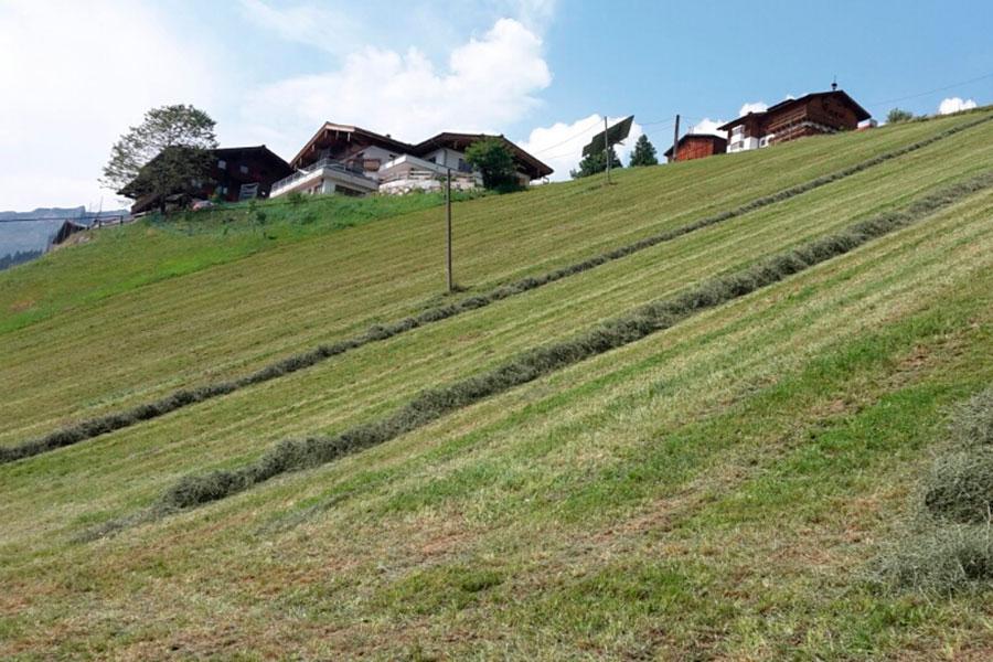 Wallegghof - Heuarbeit